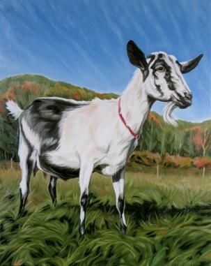 Big Picture Goat, 20 x 16