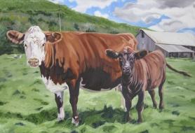 Flamstead Cows, 24 x 36