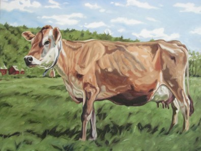Jersey Cow, 22 x 28