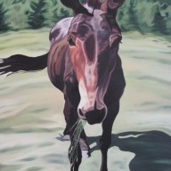 Mule Friend, 30 x 40