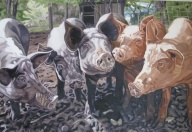 Jill and Hans' Pigs, 24 x 36