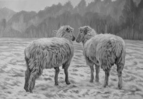Two Sheep, 16 x 24