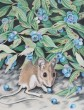 Blueberry Mouse