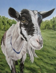 Big Picture Farm Goat, 20 x 16