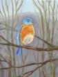 Bluebird, 9 x 12