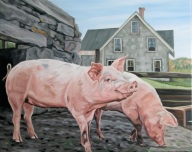 Two Pigs, 16 x 20