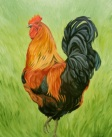 The Rooster, 24 x 20