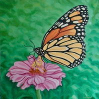 Monarch on Zinnia, 24 x 24 inches