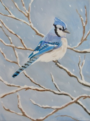 Blue Jay, 12 x 16 inches