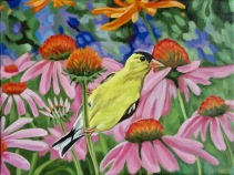 Goldfinch with Coneflower, 9 x 12 inches