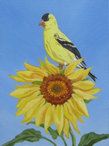 Goldfinch, 9 x 12 inches