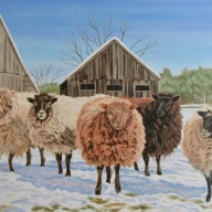 Winter Ewes, 24 x 36 inches
