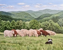 Counting Sheep, 24 x 30 inches