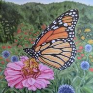 Monarch, 18 x 18 inches