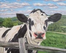 Holstein, 16 x 20