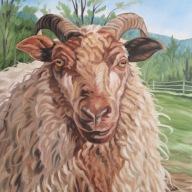 Sheep in Spring, 16 x 24 inches